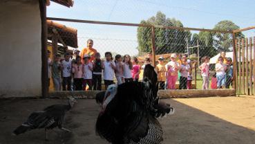 imagem de Escola Hilda - Pilar  do Sul